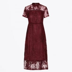 - Oussanda Lace Dress - Maxims